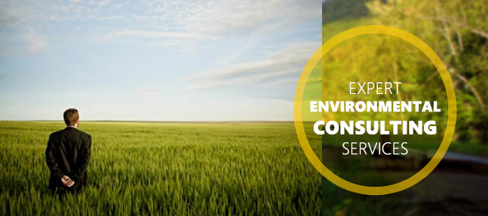 how to start an environmental consulting business